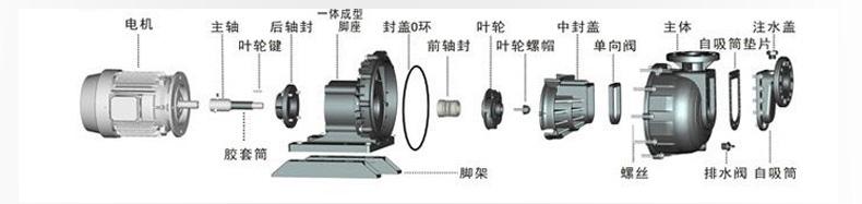 自吸式耐腐蚀泵结构图