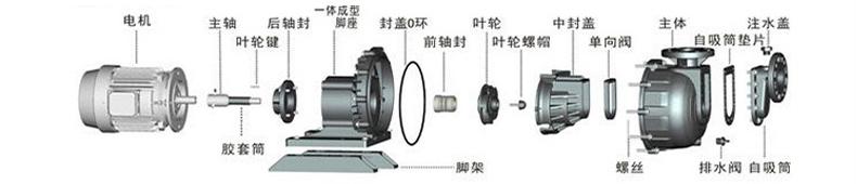 塑料防腐自吸泵的分解及零配件名称